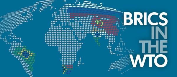 Brics In The World Trade Organization Comparative Trade Policies