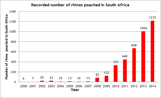 SAIIA Submission to Inquiry on Rhino Horn Trade | SAIIA