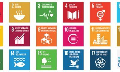Image via http://www.un.org/sustainabledevelopment