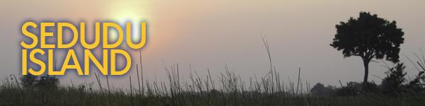 Feature img BOTSWANA-RESEARCH-Sedudu