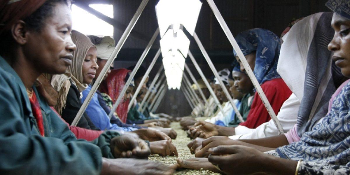 Photo: flickr, Pete Lewis/Department for International Development