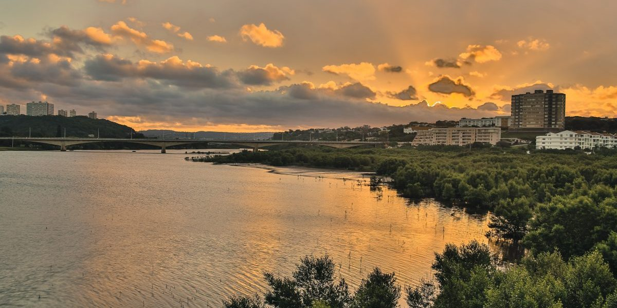 The Umgeni River, Durban, Kwazulu-Natal, South Africa. Image: Getty, Wildacad