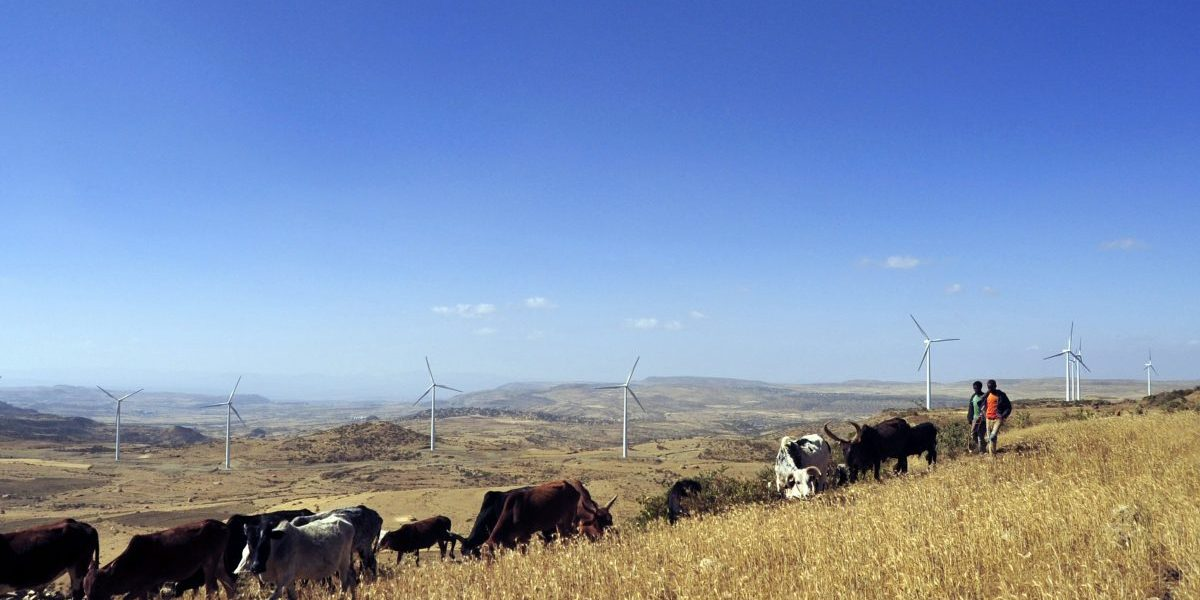 Ethiopia, Northern Tigray region, 2013: Ashegoda wind farm built by France's Vergent Group for 230 million euro ($313 million), is the largest in sub-Saharan Africa with a capacity of 120 megawatts. Image: Getty, Jenny Vaughan/AFP