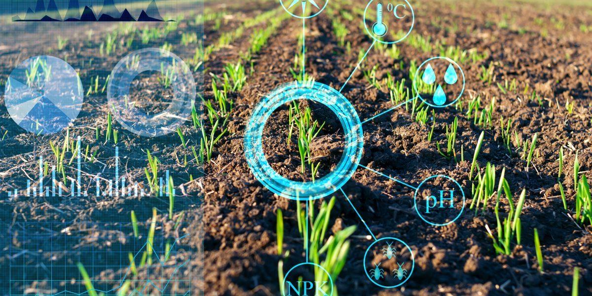 Potential use of AI to analyse crop data. Image: Getty, Igor Borisenko