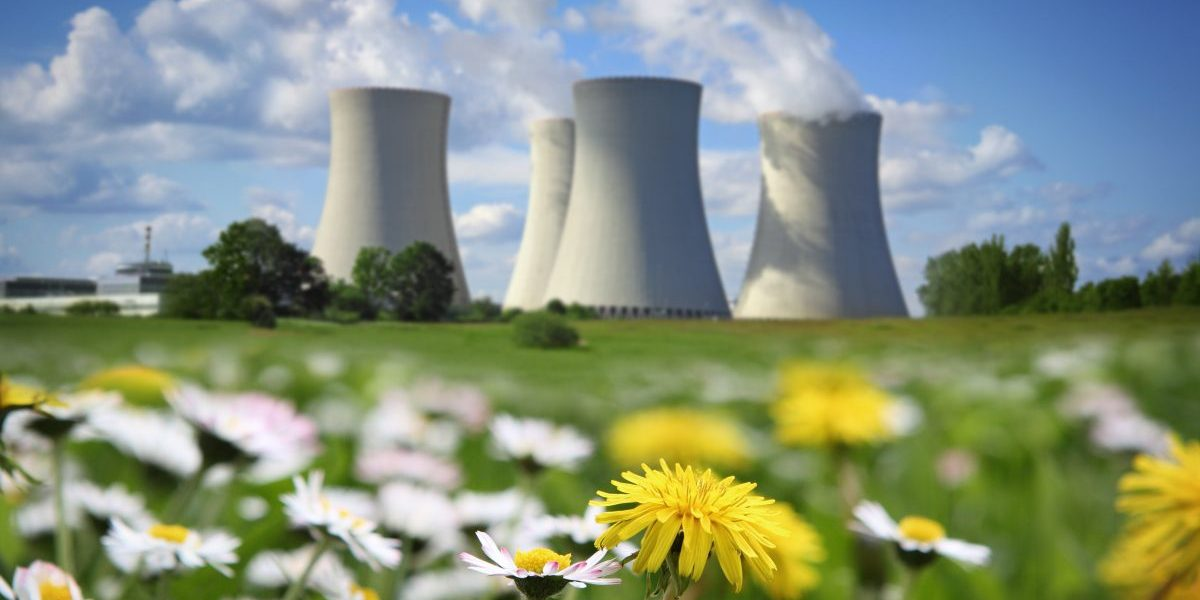 Nuclear power plant and flowering meadow. Image: Getty, narvikknarvikk