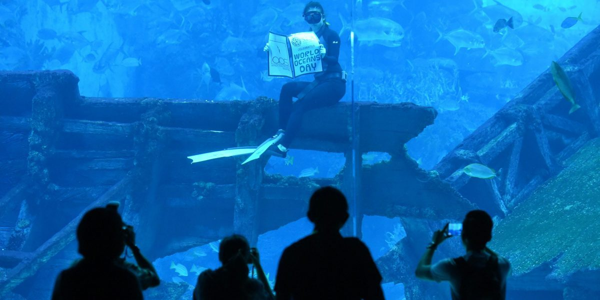 A freediver holds a sign that reads 'World Ocean Day' at Resort World Sentosa's S.E.A Aquarium in Singapore. Image: Getty, Roslan Rahman/AFP