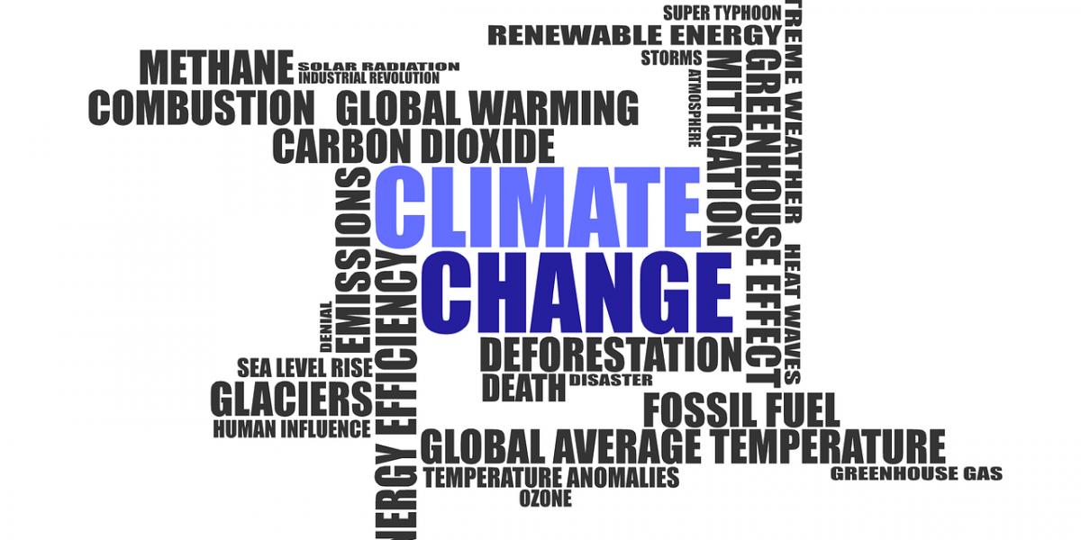 climate-change-1908381_1280_Unsplash